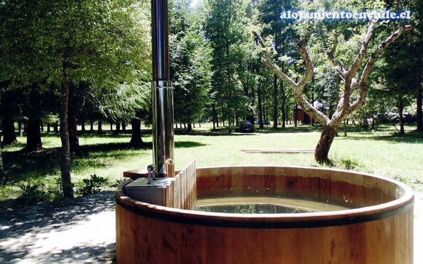 Caba as agua viva puc n alojamiento en chile for Cabanas en el agua bali