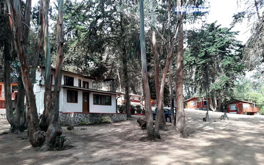 Caba as el bosque costa azul alojamiento en chile - Alojamientos en el bosque ...
